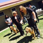 learn to trail with bloodhounds