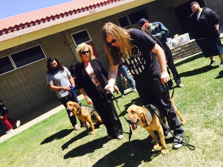 learn-to-trail-with-bloodhounds